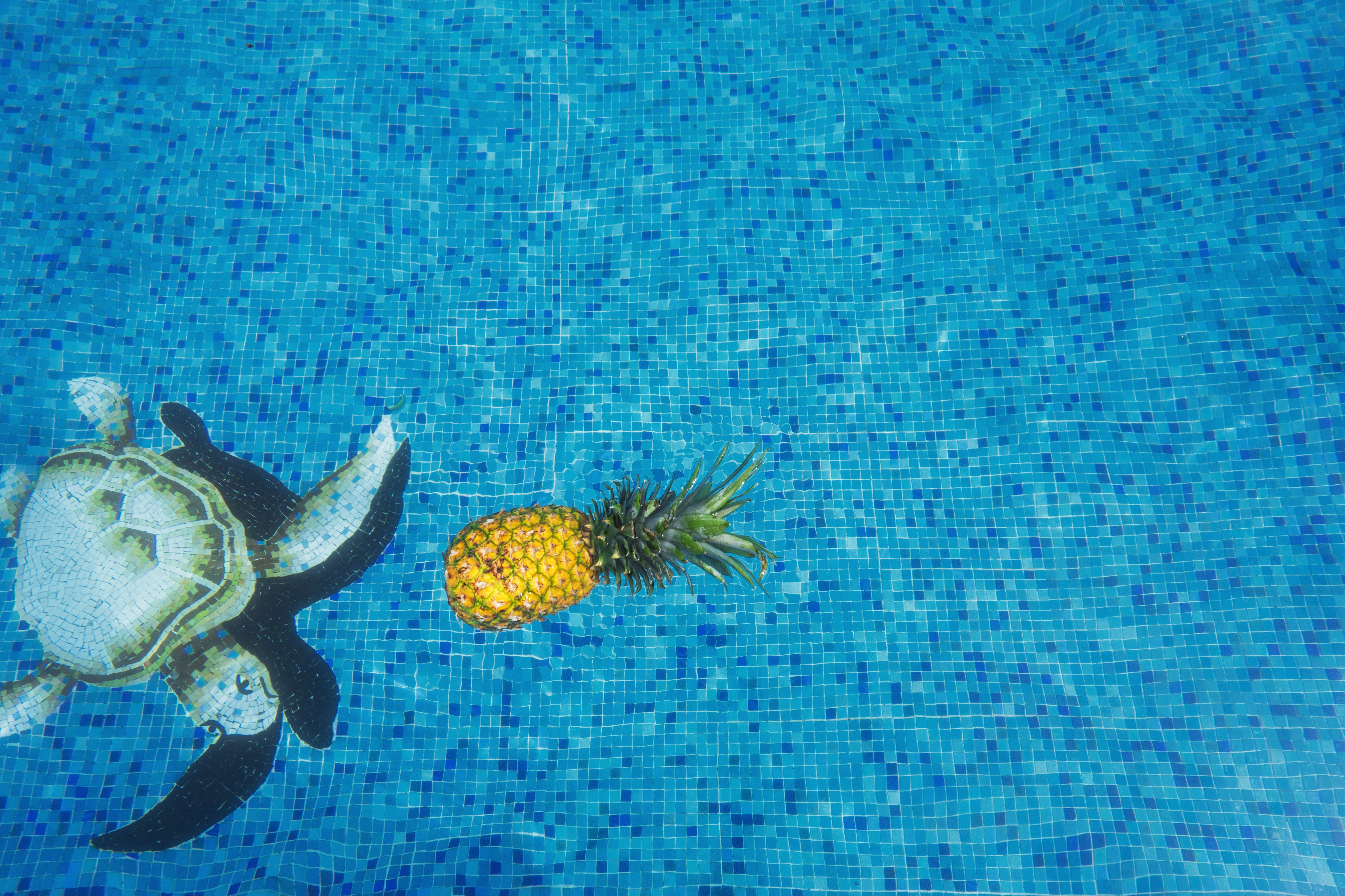 pineapple-supply-co-244472-unsplash.jpg